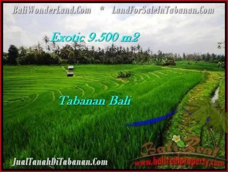 Exotic PROPERTY TABANAN LAND FOR SALE TJTB210