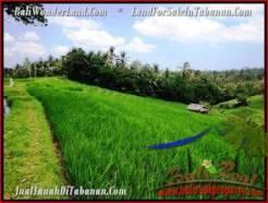 9,500 m2 LAND FOR SALE IN TABANAN BALI TJTB210