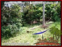 FOR SALE Exotic LAND IN Tabanan Selemadeg BALI TJTB206