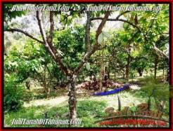 Affordable PROPERTY LAND IN TABANAN FOR SALE TJTB206