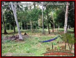 Affordable LAND SALE IN Tabanan Selemadeg BALI TJTB207