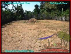 Beautiful LAND IN Canggu Pererenan BALI FOR SALE TJCG187
