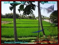 Affordable LAND SALE IN Canggu Pererenan TJCG187