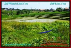 Exotic PROPERTY LAND SALE IN Canggu Brawa BALI TJCG192