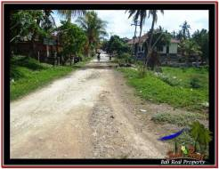Beautiful PROPERTY LAND FOR SALE IN TABANAN BALI TJTB228