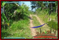 FOR SALE Magnificent 18,500 m2 LAND IN TABANAN BALI TJTB232