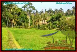 LAND SALE IN Tabanan Selemadeg BALI TJTB237