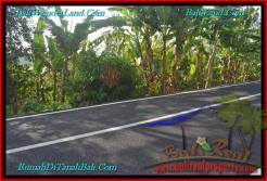 Magnificent PROPERTY Tabanan Selemadeg 5,400 m2 LAND FOR SALE TJTB241