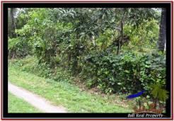 FOR SALE Affordable LAND IN Tabanan Selemadeg BALI TJTB255