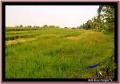 Exotic PROPERTY LAND SALE IN TABANAN TJTB259