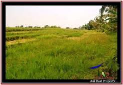 Exotic PROPERTY LAND SALE IN TABANAN TJTB259
