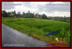 FOR SALE Affordable LAND IN Tabanan Selemadeg BALI TJTB269
