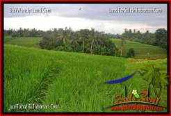 FOR SALE Affordable LAND IN Tabanan Selemadeg BALI TJTB269