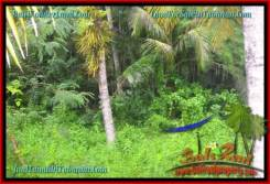 Magnificent 3,775 m2 LAND SALE IN TABANAN BALI TJTB271