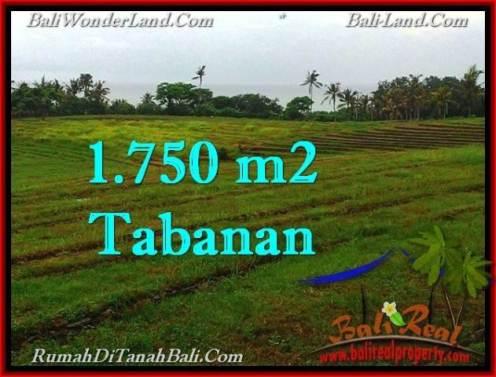 1,750 m2 LAND FOR SALE IN TABANAN BALI TJTB262