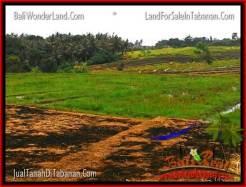 FOR SALE Beautiful 1,775 m2 LAND IN TABANAN BALI TJTB264