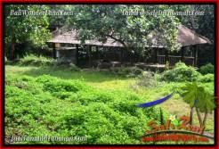 Beautiful LAND IN TABANAN FOR SALE TJTB285