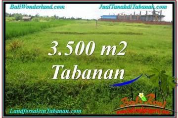3,500 m2 LAND SALE IN TABANAN TJTB302