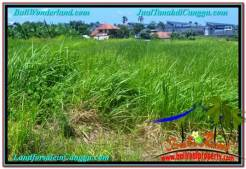 Affordable PROPERTY 500 m2 LAND IN CANGGU BALI FOR SALE TJCG201