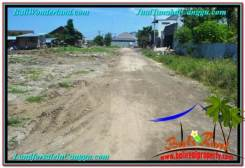 Magnificent Canggu Brawa BALI LAND FOR SALE TJCG203