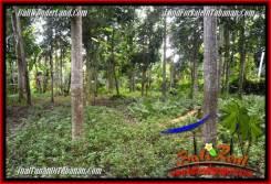 Beautiful PROPERTY 1,500 m2 LAND SALE IN Tabanan Penebel TJTB279