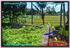 Magnificent PROPERTY 250 m2 LAND SALE IN CANGGU BALI TJCG207