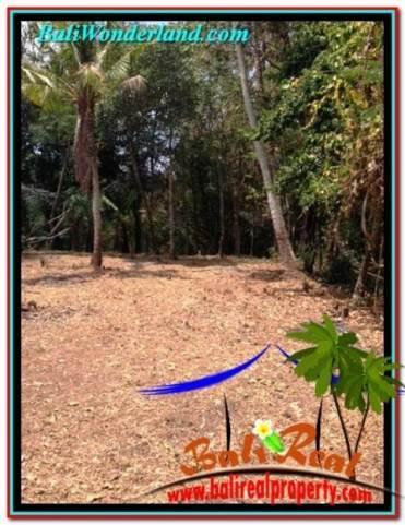 Exotic PROPERTY CANGGU BALI 1,125 m2 LAND FOR SALE TJCG208