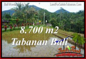 Beautiful 8,700 m2 LAND SALE IN TABANAN BALI TJTB316