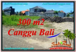 FOR SALE Beautiful LAND IN Canggu Brawa BALI TJCG203