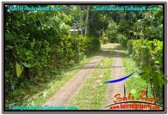 Tabanan Penebel BALI LAND FOR SALE TJTB294