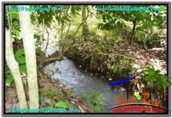Tabanan Penebel BALI LAND FOR SALE TJTB294