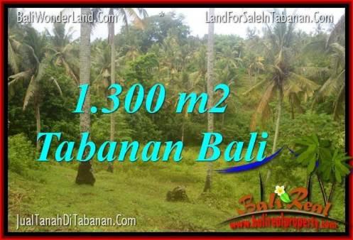 Beautiful PROPERTY 1,300 m2 LAND SALE IN TABANAN BALI TJTB314
