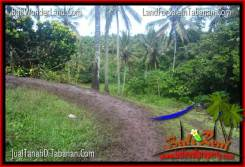 Beautiful PROPERTY 1,300 m2 LAND SALE IN TABANAN BALI TJTB314
