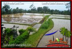 Magnificent LAND FOR SALE IN TABANAN TJTB316