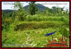 Magnificent Tabanan Penebel 150,000 m2 LAND FOR SALE TJTB318