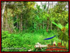 FOR SALE Magnificent LAND IN TABANAN TJTB323