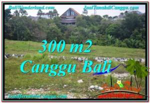 Exotic Canggu Umalas BALI LAND FOR SALE TJCG205
