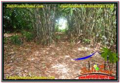 FOR SALE Exotic LAND IN TABANAN TJTB310