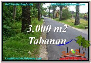 Affordable PROPERTY LAND IN TABANAN FOR SALE TJTB297