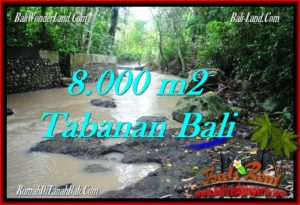 Exotic LAND FOR SALE IN TABANAN TJTB287