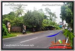 LAND SALE IN Tabanan Bedugul BALI TJTB331