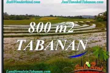 FOR SALE Exotic PROPERTY LAND IN Tabanan Selemadeg BALI TJTB324