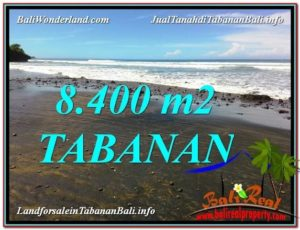 FOR SALE Affordable LAND IN Tabanan Selemadeg BALI TJTB326