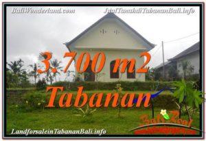 Magnificent PROPERTY 3,700 m2 LAND IN Tabanan Penebel FOR SALE TJTB336