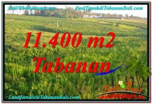 Exotic PROPERTY 11,400 m2 LAND SALE IN TABANAN TJTB339