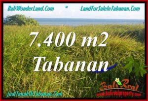 Beautiful PROPERTY Tabanan Selemadeg 7,400 m2 LAND FOR SALE TJTB341