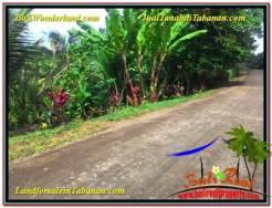 FOR SALE Exotic 1,600 m2 LAND IN Tabanan Selemadeg BALI TJTB337