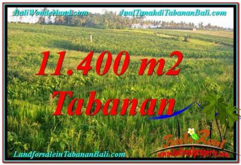 LAND IN Tabanan Selemadeg FOR SALE TJTB339
