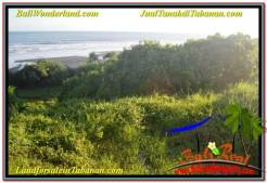 Affordable PROPERTY 11,600 m2 LAND SALE IN Tabanan Selemadeg TJTB340