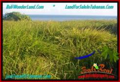Magnificent LAND FOR SALE IN TABANAN TJTB341